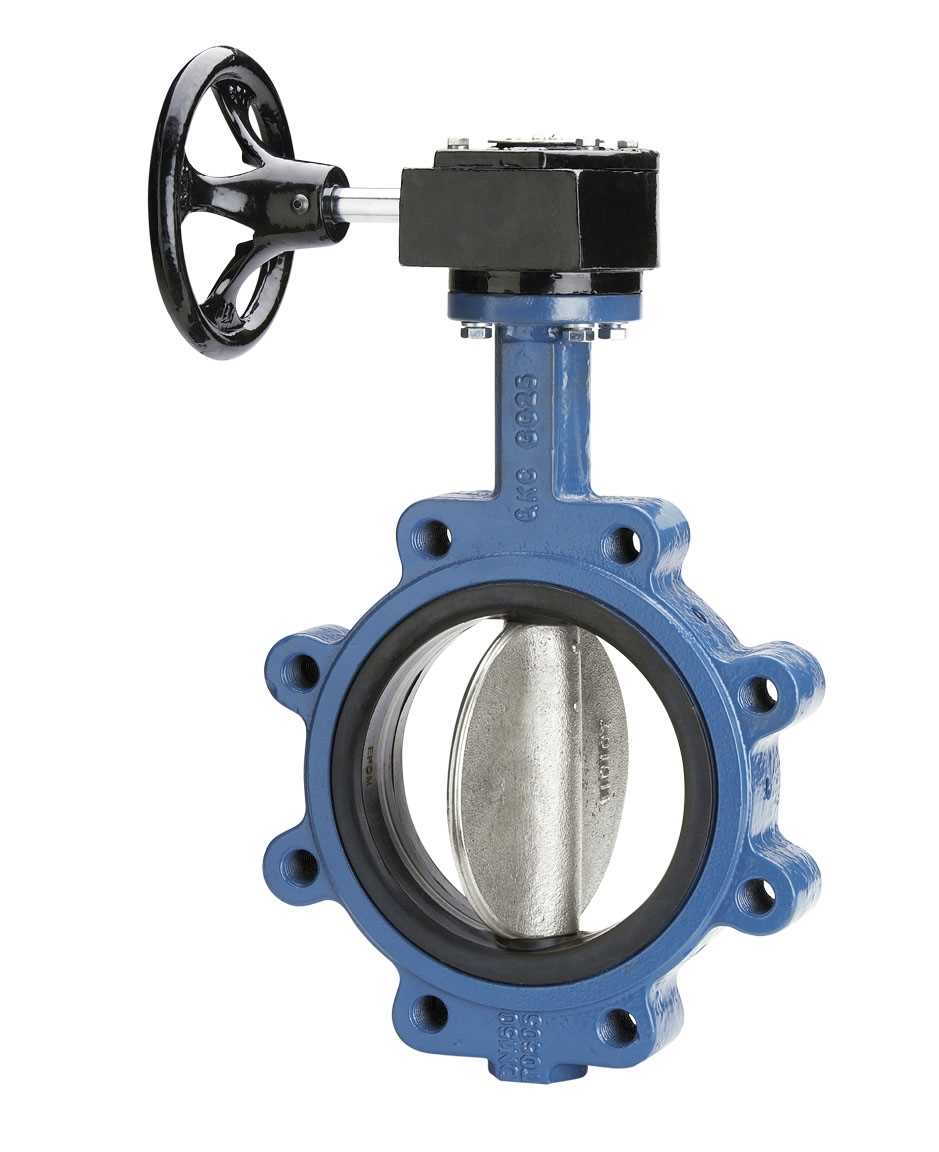 Image result for Butterfly Valve