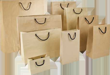craft paper bags ganpati printers