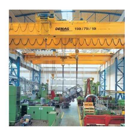 Workshop-crane